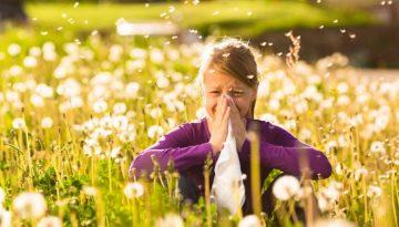 Alerjik Hastalıkların Hızındaki Artış
